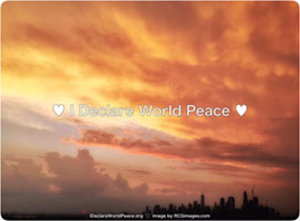 Dreamy Peace Nyc Skyline Sunset with IDWP message.jpg